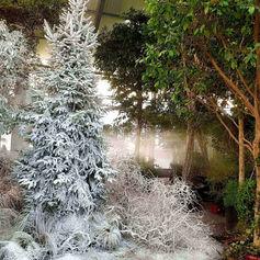Neige artificielle Regular Snow sur végétation