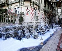 Végétation_sous_la_neige_Normandy_Deauvi