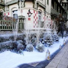 Végétation sous la neige - Décor Pyrofolie's 2018