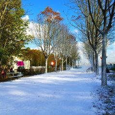 Enneigement allée avec neige Regular Snow