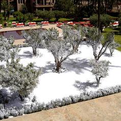 Neige Regular Snow sur végétation - Décor Pyrofolie's Hôtel Murano Resort® à Marrakech