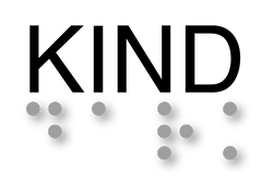 braille_logo.png