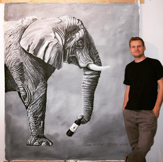 Der Elefant - Tiere Südafrikas