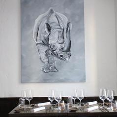 Das Nashorn - Tiere Südafrikas
