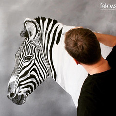 Das Zebra - Tiere Südafrikas