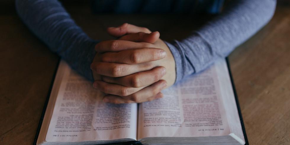 Men's Bible Study - Monday