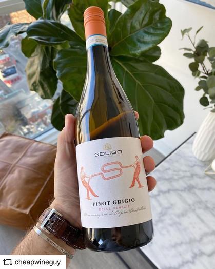 @CHEAPWINEGUY | Soligo Pinot Grigio