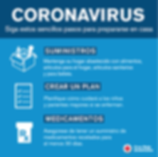 coronavirus-household-spanish.png