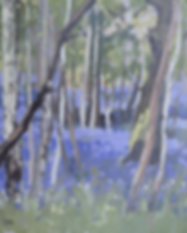 spring-gallery.png