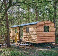 Corcovado Cabin Woods