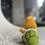 Thumbnail: Koopa Troopa (made to order)