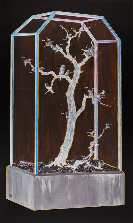 Specimen Cabinet in Negative Color