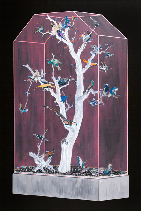 Specimen Cabinet in Negative Color III