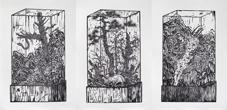 Specimen Cabinet ⅠⅡ