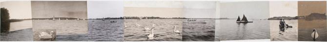 Freewheeling Trip(Swan Lake)
