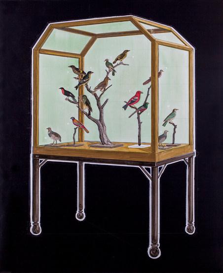 Specimen Cabinet