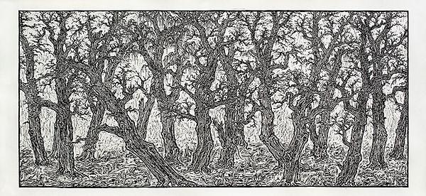 《历史观 1》纸本 木刻版画 90×200cm 2013 版数:9.jpg