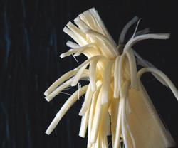 Okuyucu Kaşar Peyniri