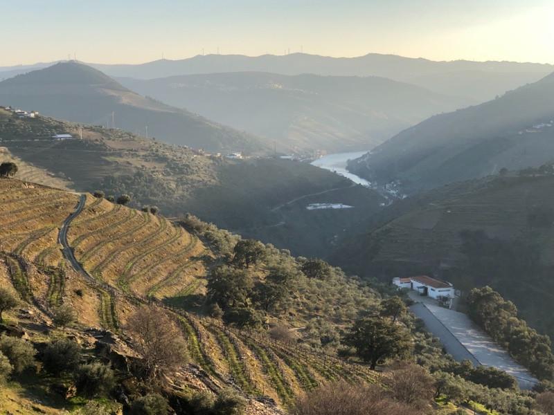 Quinta do Noval, Douro Valley, Portugal