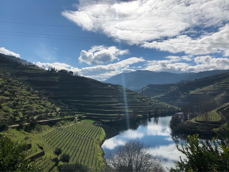 Quinta do Tedo, Douro Valley, Portugal
