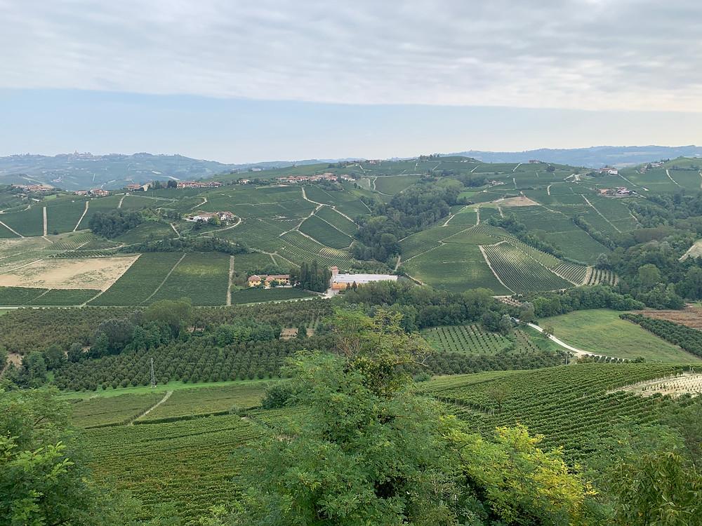 Vietti, Barolo, Piemonte