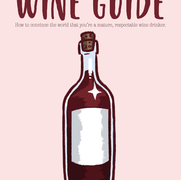 The Millennial's Wine Guide - Zine