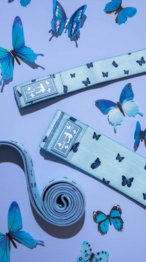 Blue Butterfly Bands
