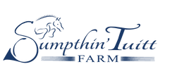 STF logo ALL NAVY v.png