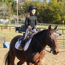 Our Lesson Horse Jackson