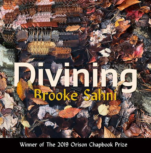 Divining, poems by Brooke Sahni