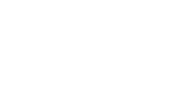 NZ whale and dolphin logo.png