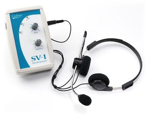 Smart Voice Key