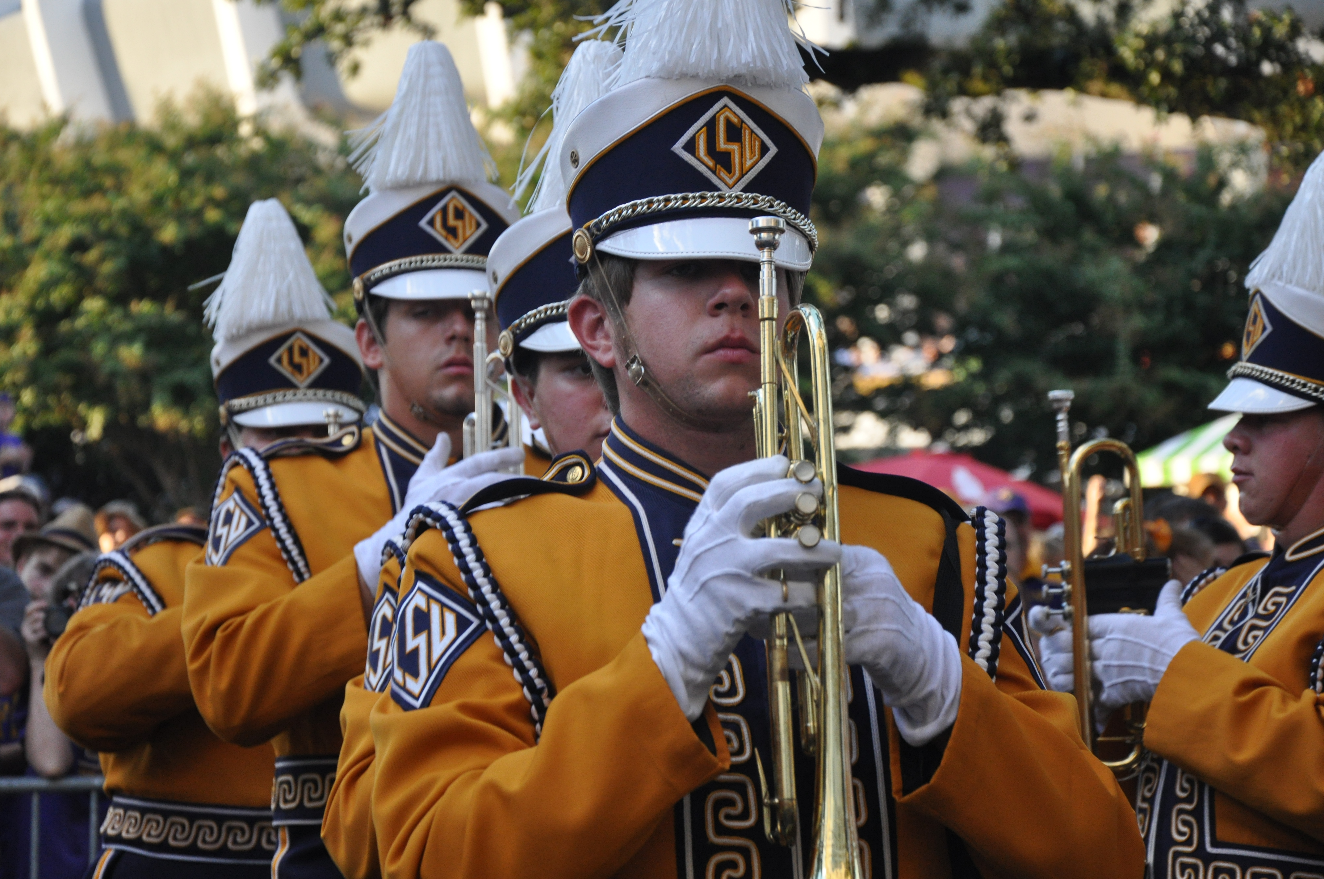 Golden Band From Tigerland