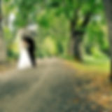 Emily Wedding Willows.jpg
