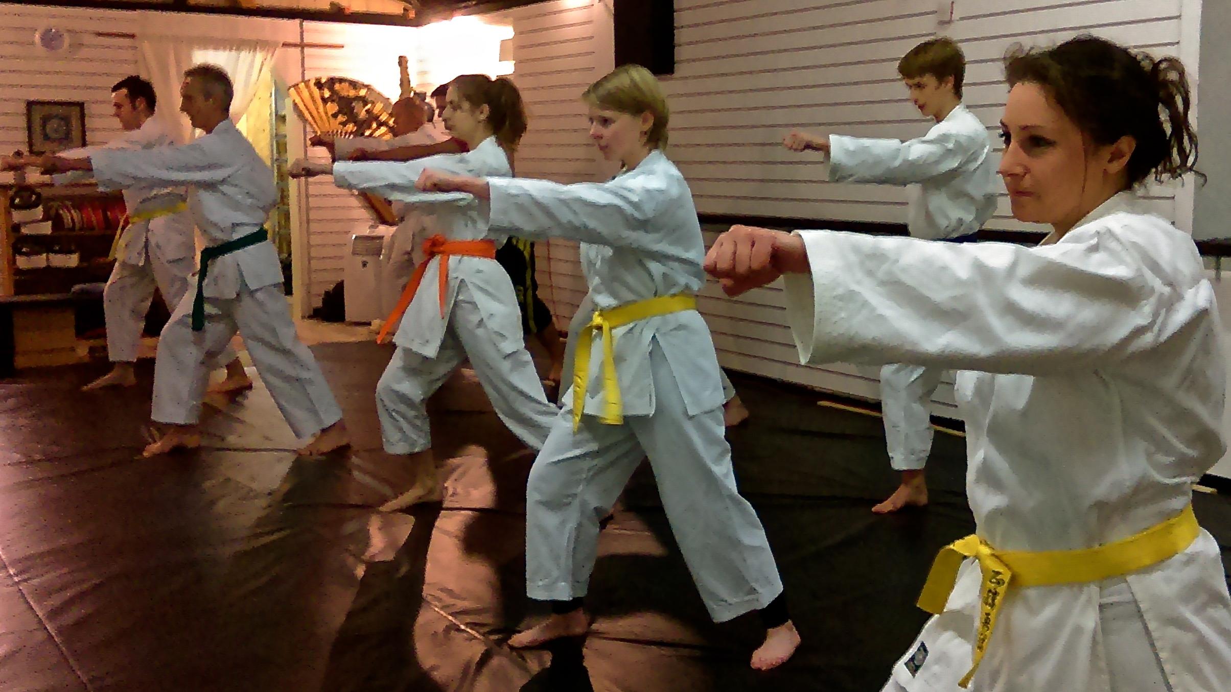 martial arts classes karate classes eveshamshinkido