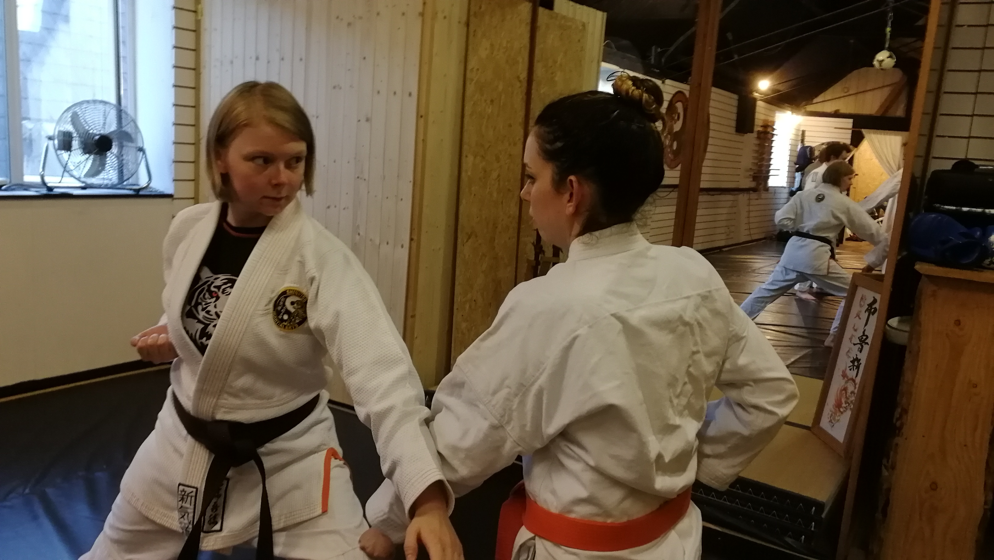 Ladies only Martial Arts Classes Shinkid