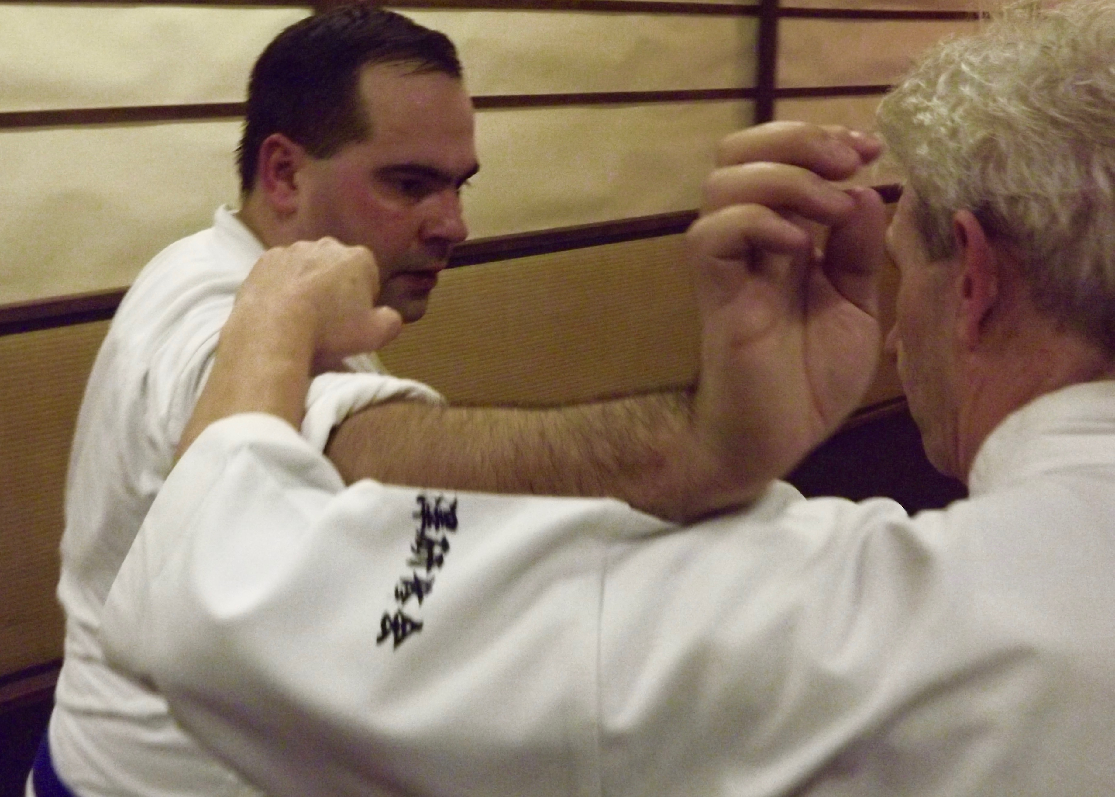 martial arts evesham shinkido1.1