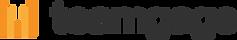 Teamgage Logo LightBG.png