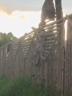 bambu fence along the farm.jpg