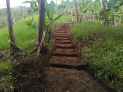 trails june .jpg