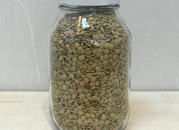 Organic Dried Lentils