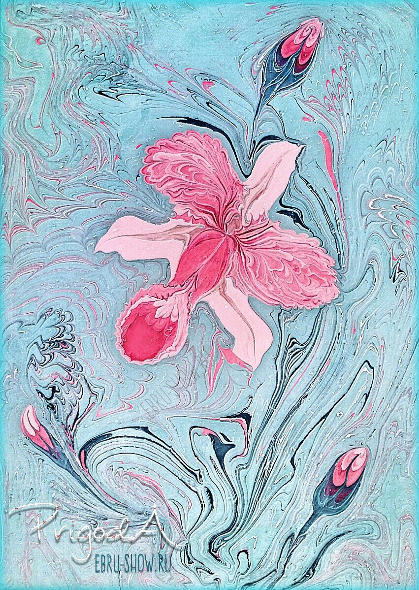 Орхидея на голубом