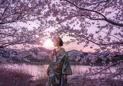 まだまだ大変な日々がつづきますが、 また自由に活動できる日が来るのを願って。 美