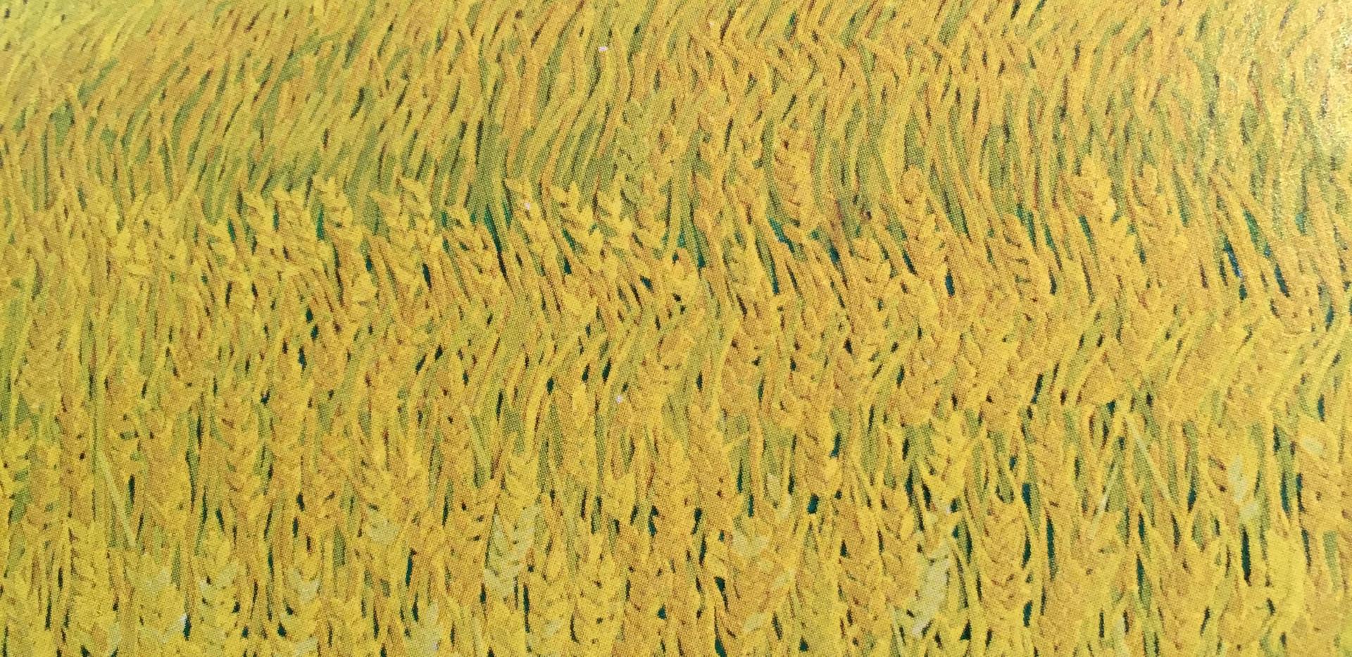 太陽と麦畑1_1