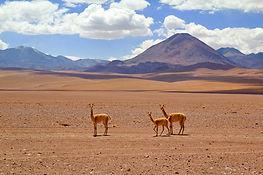 Atacama Desert - Julian Hacker from Pixa