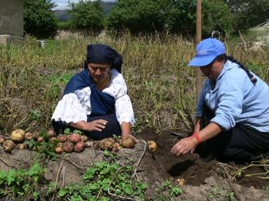 Agricultura familiar.jpg
