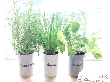 Turn Tin Cans into Plant Pots!