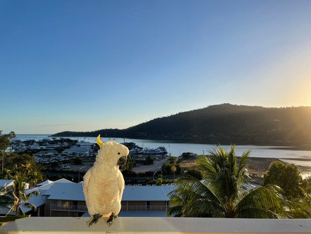 Epic Road Trip of Queensland - Part 1....
