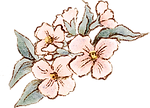Small_flowers_blush.png