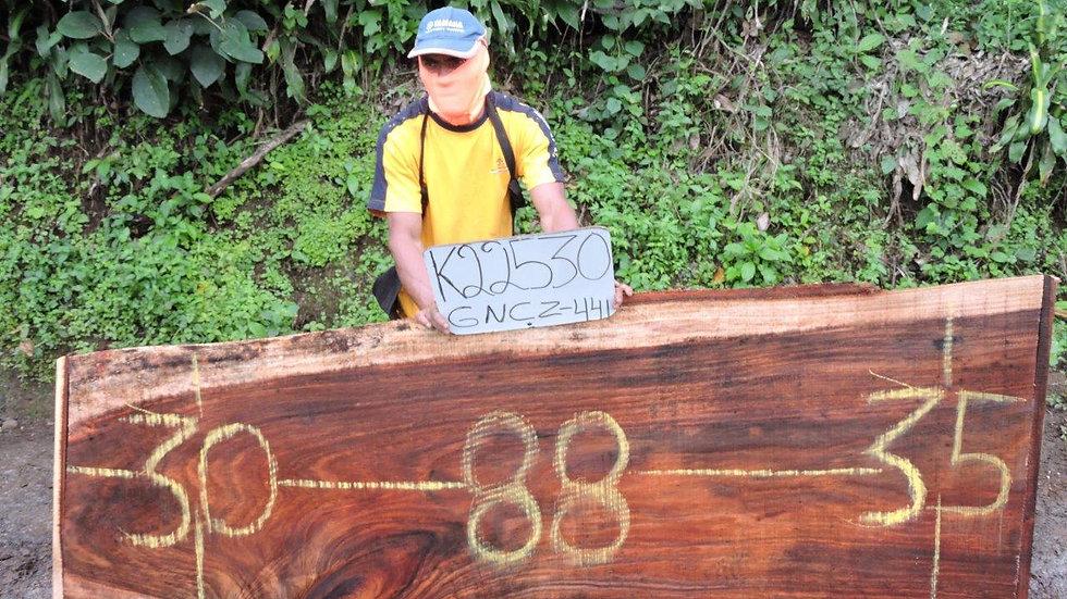 K22530 Parota Wood